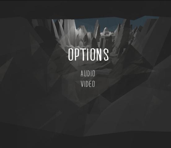 W3 OPTIONS